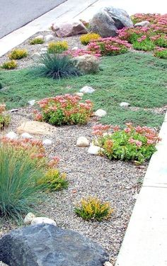 Fabulous Xeriscape Front Yard Design Ideas and Pictures 30 - Awesome Indoor & Outdoor Gravel Landscaping, Small Front Yard Landscaping, Front Yard Design, Gravel Garden, Landscaping With Rocks, Landscaping Ideas, Backyard Ideas, Gravel Patio, Large Backyard