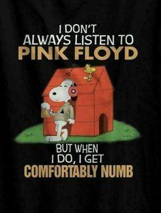 ~ Snoopy & Pink Floyd ~