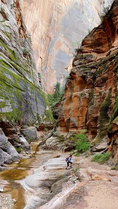 Echo Canyon, Zion National Park -The essential guide to all 59 U.S. national parks - Washington Post