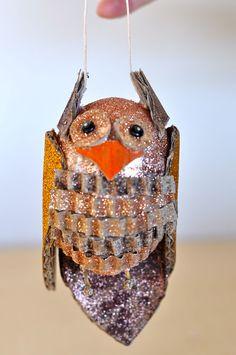 Cute little owl!