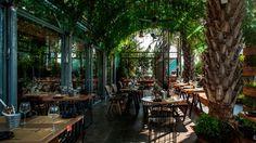 Dit restaurant in Israël staat vol planten waar de kok mee kookt