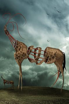 ♂ Dream / Imagination / Surrealism surreal art Safari... by ~endrju100