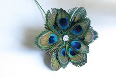 what to do with peacock feathers - Google Search