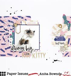 Dream big mr kitty