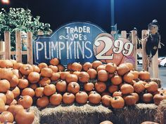 Autumn Cozy, Fall Winter, Cat Pumpkin, Pumpkin Spice, Instagram Feed, Harvest Decorations, Autumn Aesthetic, Happy Fall Y'all, Fall Pictures