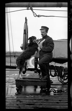 This photograph depicts a crew member of the steamer SS SUEVIC posed at the wheel with his Border Collie.  Between 1900 and the 1950s, Sydney photographer Sam Hood took hundreds of photographs of ships and their crew for souvenirs of their visit or to send home to families.