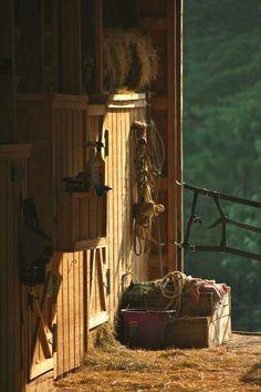 early morning inside the barn