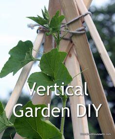 Build a Vertical Gardening Teepee - DIY