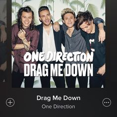 Drag Me Down is now on Spotify!