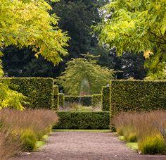 Scampston Garden.