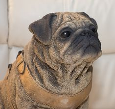 Lifesize Pug Ornament for Indoors or Outdoors A perfect gift for any pug lover Animal Garden Ornaments, Dog Ornaments, Greek Statues, Buddha Statues, Stone Statues, Angel Statues, Dragon Statue, Pugs, Pug Dogs
