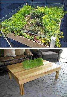 miniature garden designs on table tops