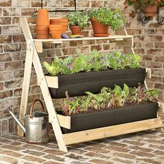Want this - on the deck, to grow greens, AWAY from the chickens!