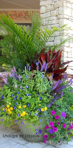 Areca palm, xerox cordyline, victoria salvia, pink angelonia, purple heart, torenia, lantana and purple wave petunia. Unique by Design l Helen Weis
