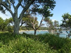 A snippet of the stunning Bundeena South of Sydney NSW Australia not far from the home of Podsnap - Lucky us!!!
