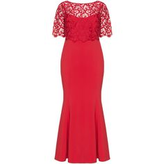 Ariella Red Plus Size Lace evening dress ($315) ❤ liked on Polyvore featuring dresses, plus size, red, lace cocktail dress, spaghetti strap maxi dress, short sleeve maxi dress, short-sleeve maxi dresses and maxi dresses