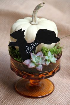 SQUIRREL! Cute DIY Thanksgiving Place Setting --> http://www.hgtvgardens.com/crafts/fall-craft-thanksgiving-place-settings?soc=pinterest