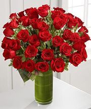 Search for fate luxury rose bouquet 48 stems of 24 inch premium long stemmed roses Luxury Flowers, Romantic Flowers, Amazing Flowers, Beautiful Roses, Rose Flowers, Pretty Flowers, Ecuadorian Roses, Send Roses, Glass Cylinder Vases