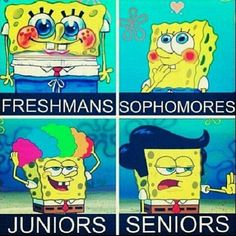I didn't look like that when I was a freshmen! And I certainly don't look like Sophmore spongebob now! And I really hope I don't look like Junior spongebob next school year! Senior spongebob looks cool though. Funny Pins, Funny Stuff, Random Stuff, Random Things, Stupid Stuff, Weird Things, Funny Spongebob Memes, Funny Jokes, Jokes