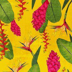 Tropical flowers! #patterns #illustration #Brooklyn  (at Brooklyn, New York)