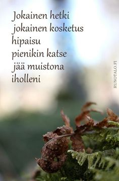Jokainen hetki jokainen kosketus voimakortti Runotalo Motivational Quotes, Inspirational Quotes, Affirmation Cards, Peace Of Mind, No One Loves Me, Love Life, Wise Words, Affirmations, Qoutes