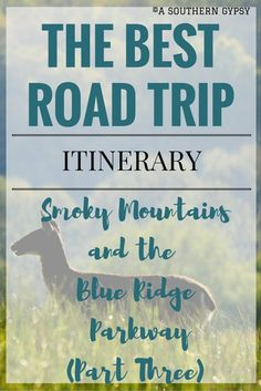 Road Trip from the Smoky Mountains up the Blue Ridge Parkway | Part Three - A Southern Gypsy's Adventures