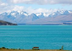 """""""@Slate: This New Zealand lake is so tranquil it's almost offensive--PHOTOS: http://slate.me/1nBTI7M pic.twitter.com/HJvFVY2jkQ"""""""