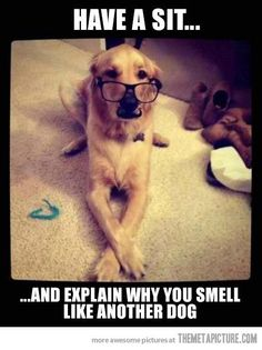 Ha! So true! via: Tracy Griffin LOL :)