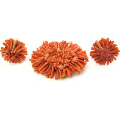 Branch Coral Jewelry. Oval Brooch, Clip Earrings Set. Germany W. ($82) ❤ liked on Polyvore featuring jewelry and brooches