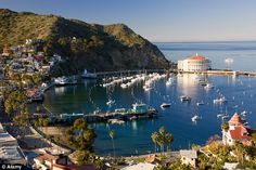 Catalina Island, USA  @ Anytime, time allows the TRIP over from Santa Monica!@ For that matter, anytime!@