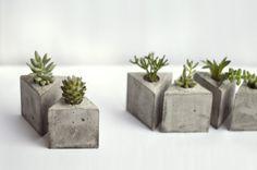 [ sobre refúgios urbanos ] Formatos // Vaso Ico (8x8x10 cm) Vaso Octa (7x6x7 cm) Vaso Tri (6x6,5x6 cm) Vaso Diamante (7,5x6x7,5 cm) Vaso Vida (7x4,5 cm) R$ 40 (cada vaso sem planta) // R$ 95 (com 3...