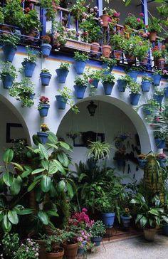 Patio en Córdoba, Spain