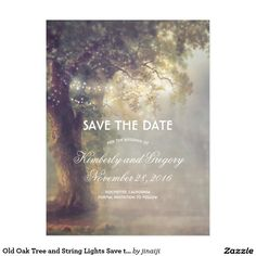 Old Oak Tree and String Lights Save the Date