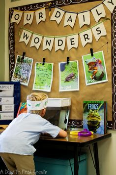 Studying Frogs With Kindergarteners A kindergarten science center where students observe tadpoles Science Center Preschool, Primary Science, Science For Kids, Science Activities, Science Table, Science Area, Summer Science, Science Fun, Physical Science