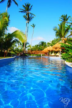 The pool at Dreams Punta Cana! Where I went for my Honeymoon ❤