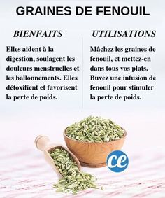 Essential Tips And Tricks For Eating A Healthy Diet – Nutrition Nutrition Holistique, Holistic Nutrition, Nutrition Plans, Nutrition Information, Complete Nutrition, Foods That Contain Calcium, Healthy Potatoes, Vitamin K2, Balanced Diet