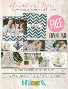 June Free template   Photoshop templates for photographers by Birdesign