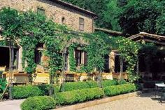 Image result for photos of tuscany vineyards