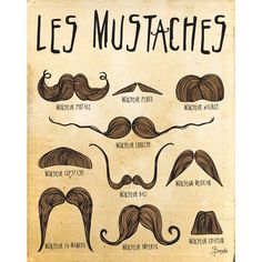 Mustache Print Art, Digital Illustration Wall Decor, Mustaches Drawing... ($15) ❤ liked on Polyvore featuring home, home decor, wall art, pictures, text, art, moustache, mustache, typography wall art and quote posters