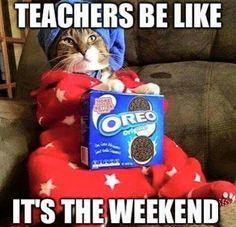 Teachers be like - HuMoR School Quotes, School Memes, Teacher Humour, Funny Teacher Quotes, Teacher Comics, Classroom Humor, Teaching Memes, Teachers Be Like, Memes For Teachers