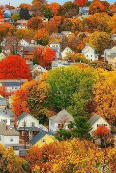 !!que bonitos colores!!