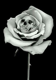 Rose with skull center