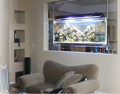 Decoração com aquários | Blog Todos Decoram