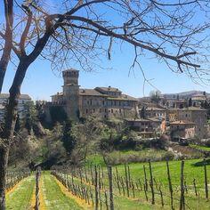 Colline modenesi: il castello di Levizzano Rangone - Instagram by lilaroses1982