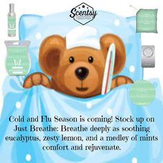 Just Breathe www.makesscentswright.scentsy.us or www.facebook.com/TiffanyYourScentsyLady
