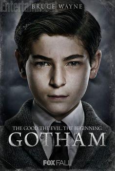 Gotham Tv Show Poison Ivy