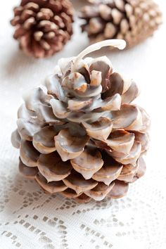 Or maybe just the pinecones, fall.   In which case you could make these Pinecone Fire Starters.    Also a good way to use up those leftover bits of wax when you get to the end of a candle.