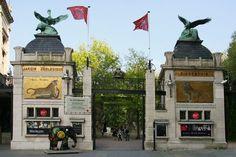 Zoo Antwerpen. Een mooie oude stadsdierentuin, vergelijkbaar met Artis in Amsterdam en de Berliner Zoo. (1987)