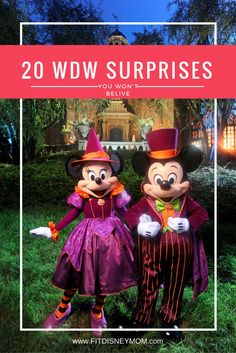 20 Surprising Discoveries for First Time Walt Disney World Guests.