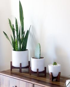 Modern Planter with Plant Stand - L to R: Small, Extra Small, Tiny